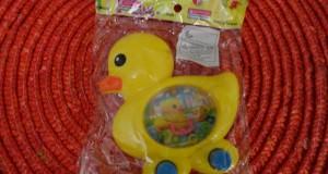 واترگیم اردک